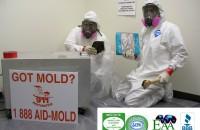 Mold remidiation in Salt Lake City