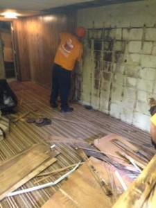 Mold Removal in Salt Lake City Home