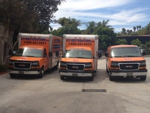 Mold Removal Salt Lake City Fleet