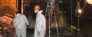 Mold Removal Technician Working In Basement