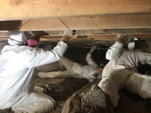 Technicians Conducting Water Damage Restoration repairs In A Crawlspace